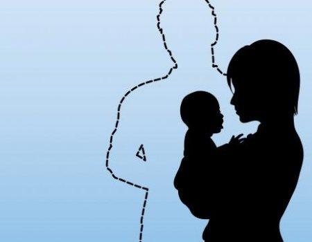 single parent vs traditional family essay
